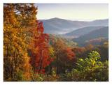 Autumn foliage on Blue Ridge Range near Jumping Off Rock  North Carolina