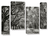 Live Oak Avenue 4 piece gallery-wrapped canvas