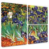 Irises in the Garden Gallery-Wrapped Canvas