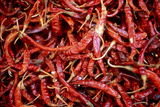 Red Chili Peppers (Ocotlan Market  Oaxaca  Mexico)