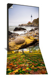 Hyde Park in Autumn  London  England & Portland Head Lighthouse  Portland  Maine Set