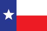 Texas Flag Art Print Poster
