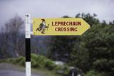 Leprechaun Crossing Sign