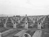US Marine Corps Cemetery