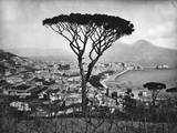 Panoramic Aerial View of Naples