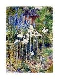 A Flower Garden  1893