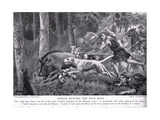 Romans Hunting Wild Boar