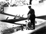 Lubetkin Penguin Pool  January 1934