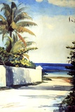 Road in Nassau  1898-99