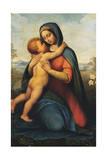 Madonna and Child or Madonna Del Giglio