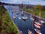 Sailboats in Opening Day Yacht Parade