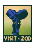 Visit the Zoo Poster with Elephant