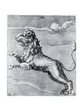 Engraving of the Lion; Constellation