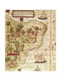 Map of Brazil  from Miller Atlas by Pedro and Jorge Reinel  Lopo Homen