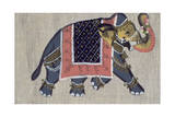 An Indian Elephant  Indian