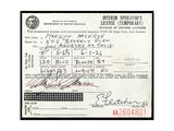 Marilyn Monroe's Driver's License  1956