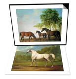 "Shafto Mares and a Foal & ""Mambrino""  C1790 Set"