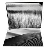 Reeds in Pond with Fog on Horizon & Dune Landscape Set