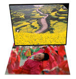 Mountain Path Covered by Canola Fields  China & Children Celebrating Chinese New Year  Beijing Set