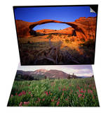 Landscape Arch in Arches National Park & Blooming Wildflowers in Cumberland Basin Set