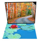 Autumn Trees Lining Country Road & Lily Pads and Flower Blossom Set