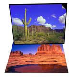Forest of Cactus & Desert Lake Bed Set