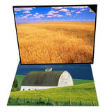 Golden Wheat Field under Blue Sky & White Barn and Canola Field Set