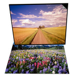Dirt Road Stretching Through Fields & Wildflower Meadow and Tatoosh Range Set