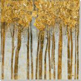 Plumas Forest
