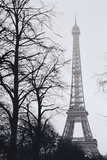 France  Paris Eiffel Tower at Winter