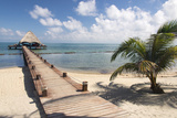 Placencia  Belize Roberts Grove Resort  Pier Leads from Beach to Bar