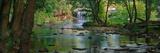 Cataract Falls State Park  Indiana  USA