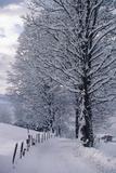 Austria  Tirol  Kitzbuhel  Austria's Premier Ski Town in Winter