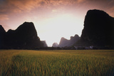 China  Guangxi  Yangshuo Mountain Sunset at Autumn Rice Field