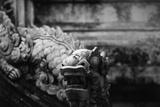 Vietnam  Hue  Royal Library Dragon Gargoyle  Close-Up