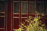 Vietnam  Hue  Forbidden Purple City  Hung to Mieu Temple  Purple Door