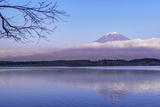 Japan  Shizuoka  Lake Tanuki  Mt Fuji