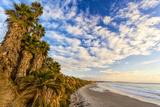 The Golden California Coastline at Swami's Beach in Encinitas  Ca