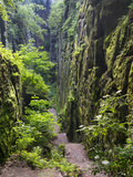 Nasse Schlucht at Kuhstall Cave  Saxon Switzerland  Germany  Saxony