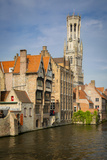 Belfry of Bruges Towers over the Buildings  Bruges  Belgium