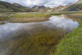 Stream Running Through a Meadow in Landmannalaugar  Iceland