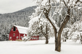 Fresh Snow on Red Barn Near Salmo  British Columbia  Canada