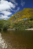 Taieri River and Taieri Gorge Train  South Island  New Zealand