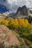 Lake Blanche Trail in Fall Foliage  Sundial Peak  Utah