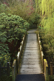 Bridge  Crystal Springs Rhododendron Garden  Portland  Oregon  Usa