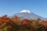 Japan  Yamanashi  Lake Yamanaka Mt Fuji with Autumn Color