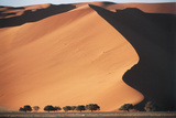 Namibia  Central Namib  Namib-Naukluft NP Sand Dunes of Sossusvlei