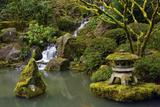 Mossy Waterfall  Portland Japanese Garden  Portland  Oregon  Usa
