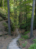 Elbsandsteingebirge  in the NP Saxon Switzerland Hiking Trails