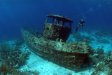 Saba Tugboat  Artificial Reef Site  Curacao  Netherlands Antilles